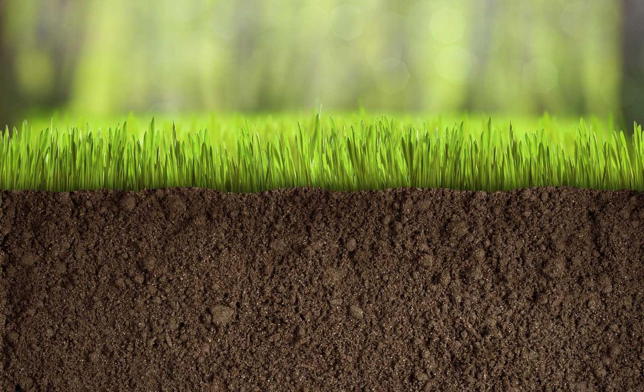 Чому Драбівська асоціація фермерів не підписала меморандум за скасування мораторію на продаж землі