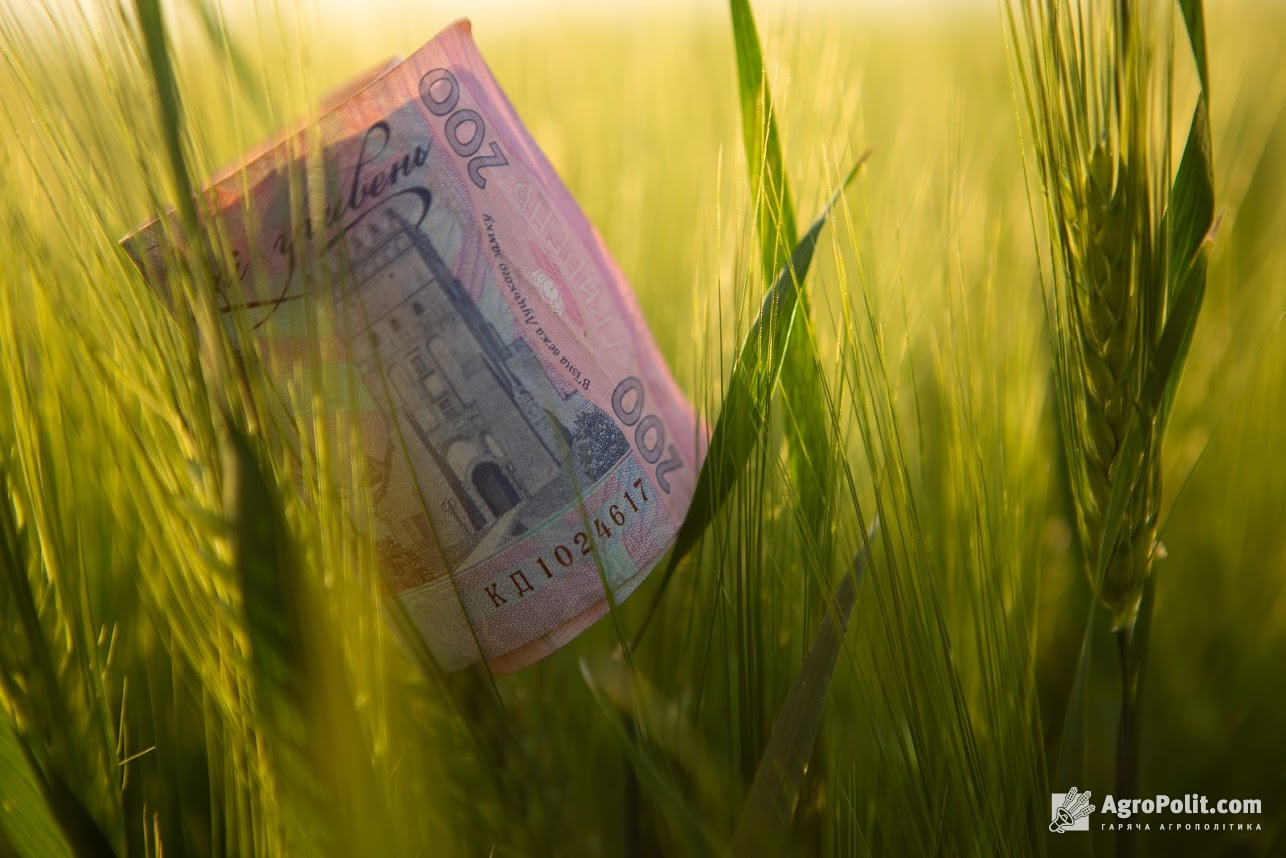 Інформація щодо надання субсидії виробникам гречки.