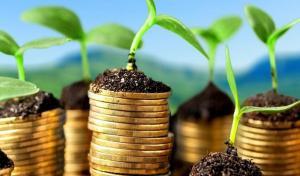 Китайські інвестори зацікавились аграрним потенціалом Херсонщини