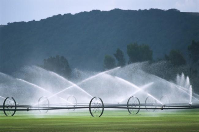 Порошенко одобрил срок аренды для мелиорированных сельхозземель от10 лет