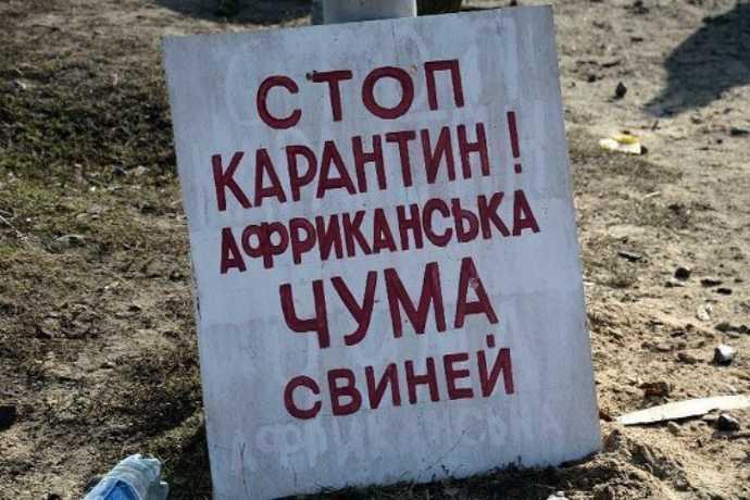 В Голопристанському районі буде встановлено 5 карантинних постів у зв'язку із підозрою захворювання на АЧС