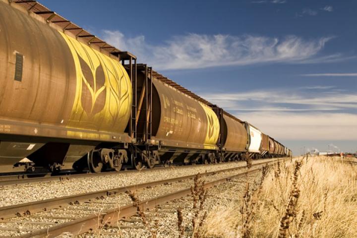 Грузія надасть Україні локомотиви для перевезення зерна