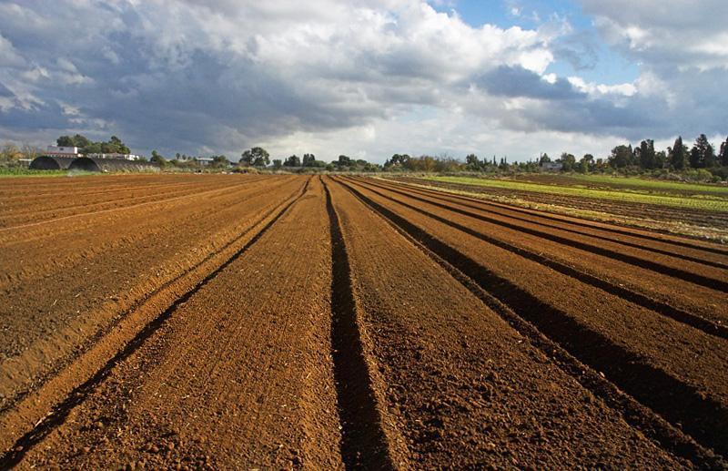 Уряд розглядає передачу земель як один зі стимулів до об'єднання громад