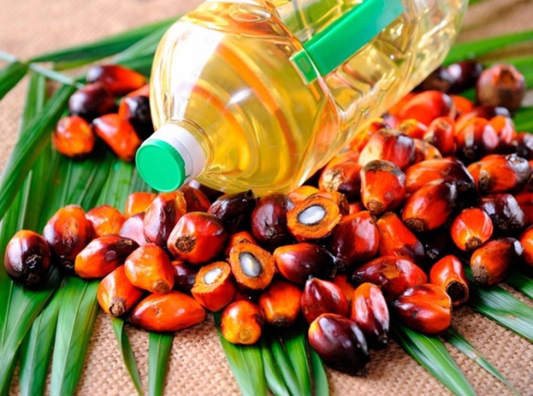 Україна імпортує найбільше пальмової олії серед країн Європи