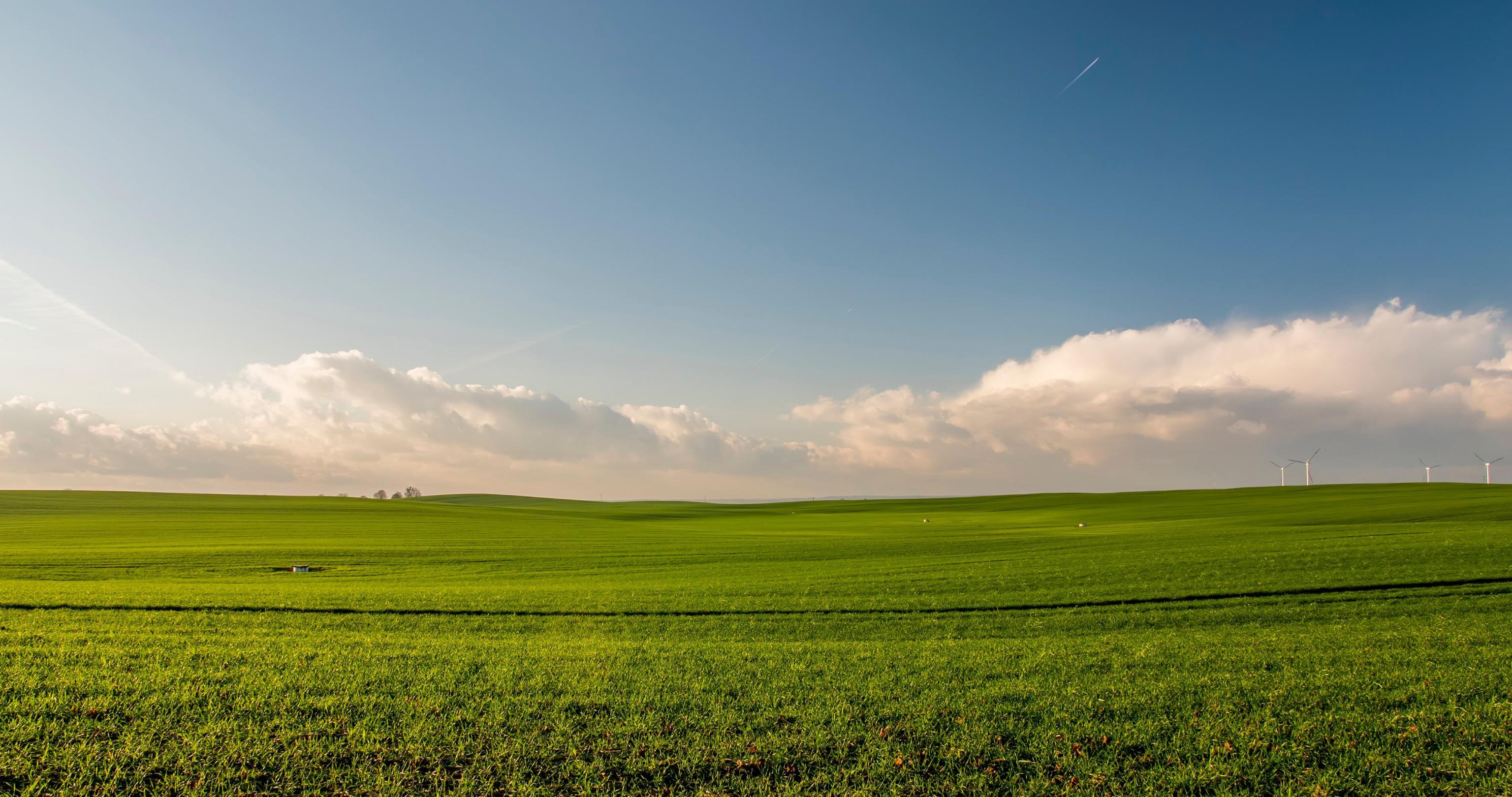 Українська земля перетвориться на пустелю