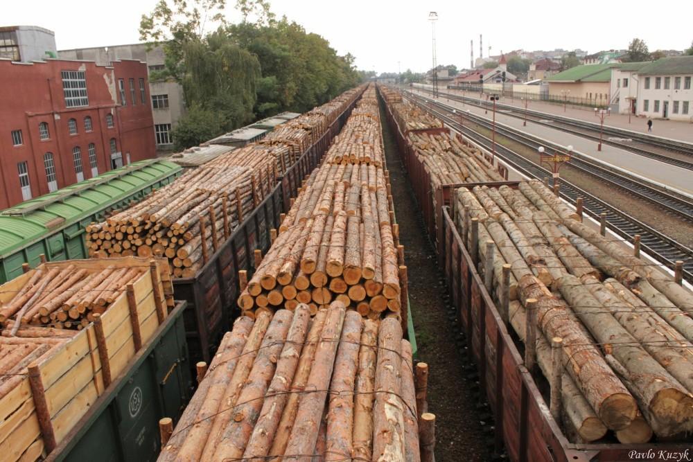 Картинки по запросу експорт лісу-кругляка
