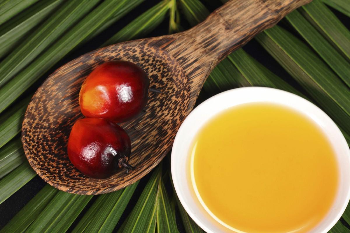 Україна побила рекорд з імпорту пальмової олії