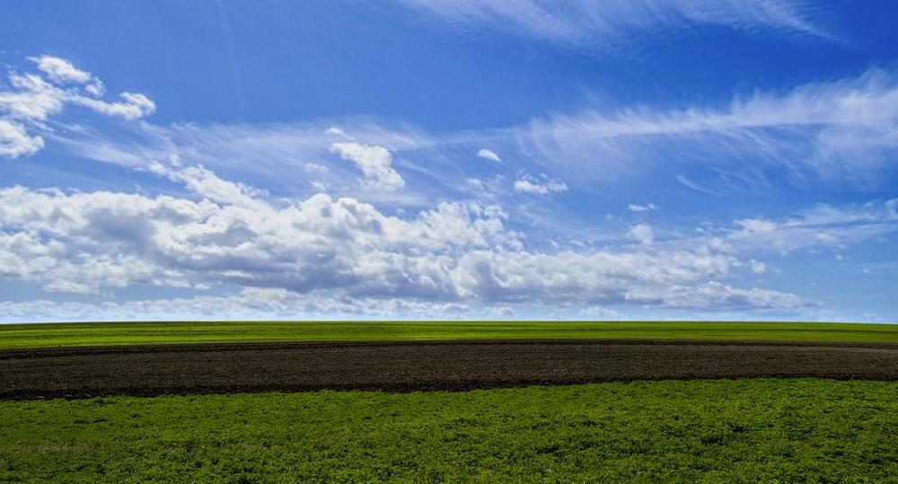 Україна не використовує свого потенціалу земельних ресурсів, – НААН