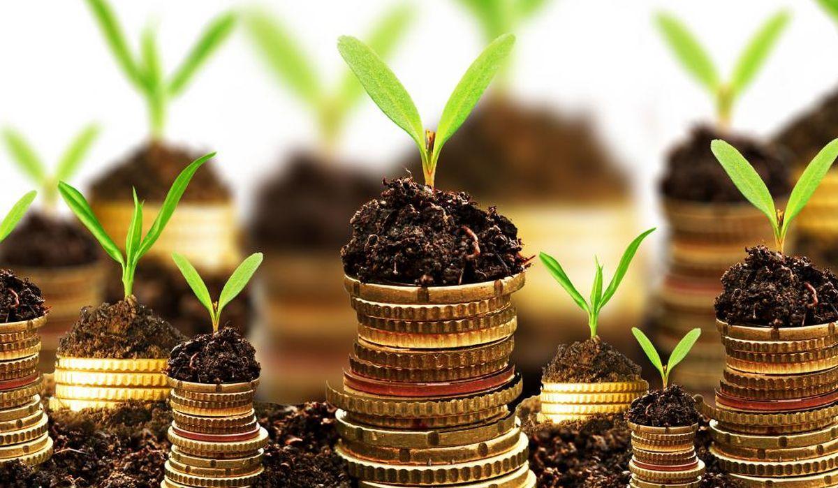 В Україні хочуть ввести один фіксований податок на гектар землі