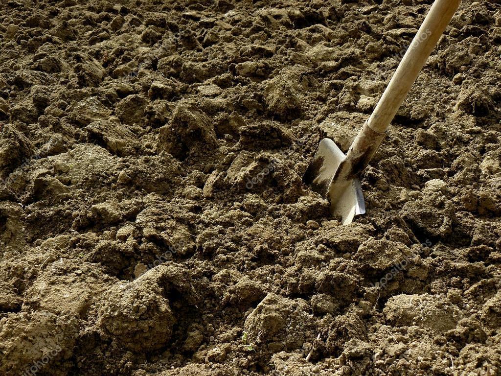 На розгляд Ради внесли законопроект, який дозволить безперешкодно відбирати землю у селян