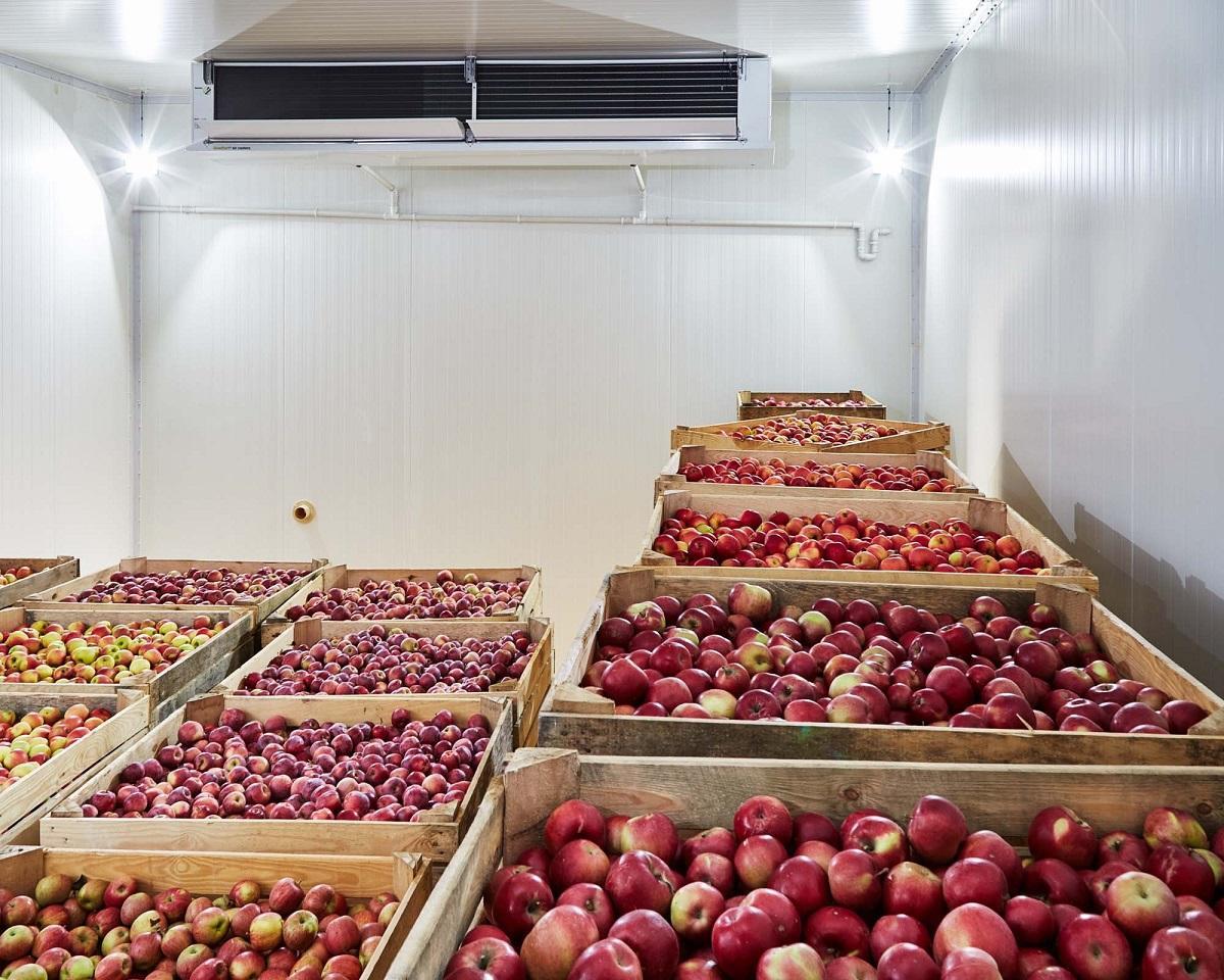 На Дніпропетровщині будують найбільший в Україні холодильний комплекс для зберігання яблук