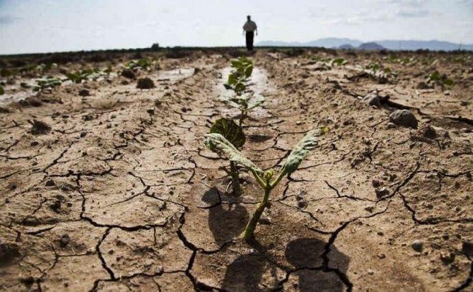 Смерть від змін клімату вже скоро