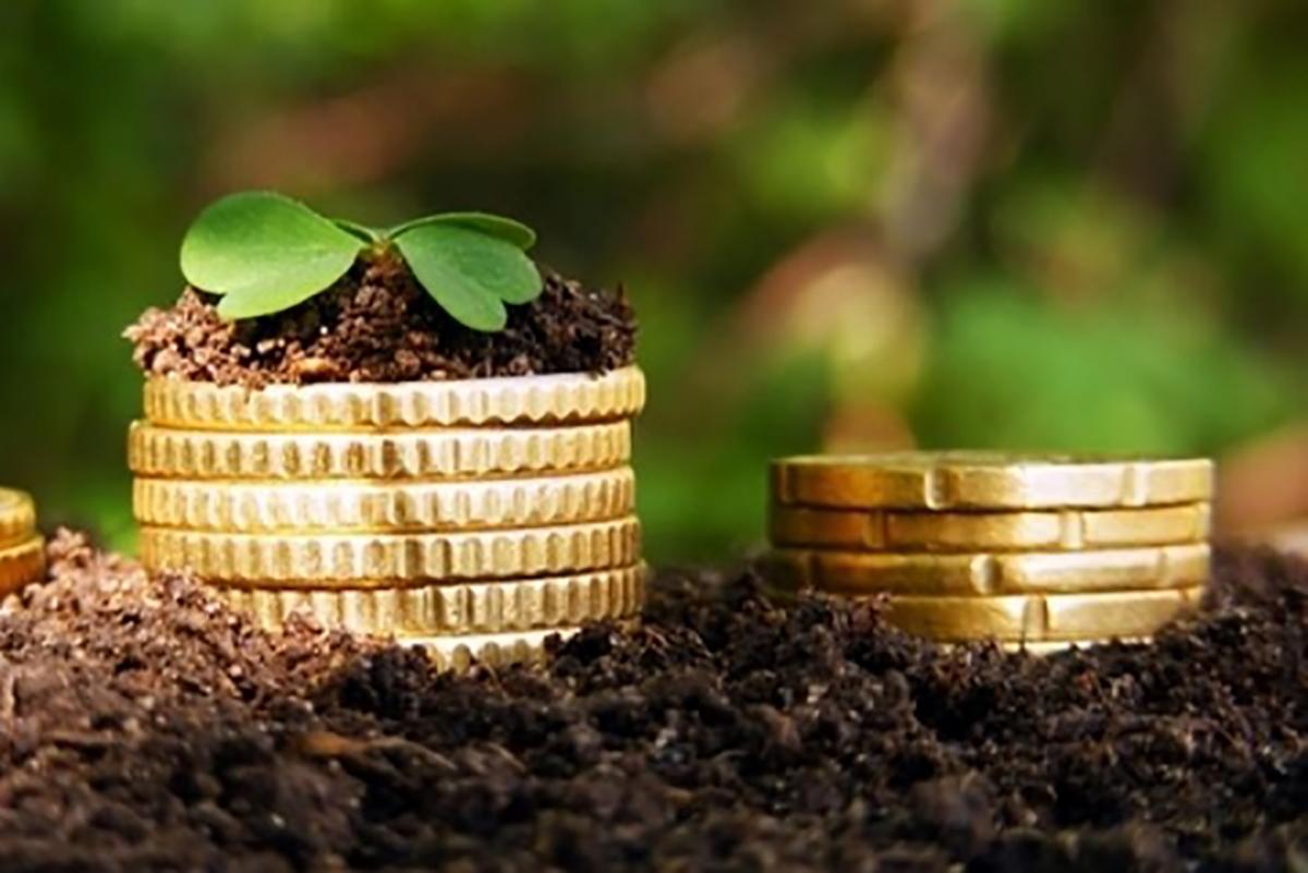 Уряд розподілив 4 млрд грн державної підтримки аграріїв на 2020-й рік, – Гончарук
