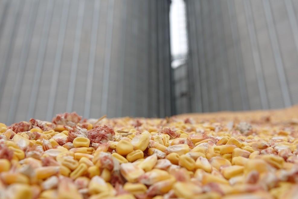 Податківці виявили мільйонну схему ухилення від сплати податків під час експорту сільгосппродукції