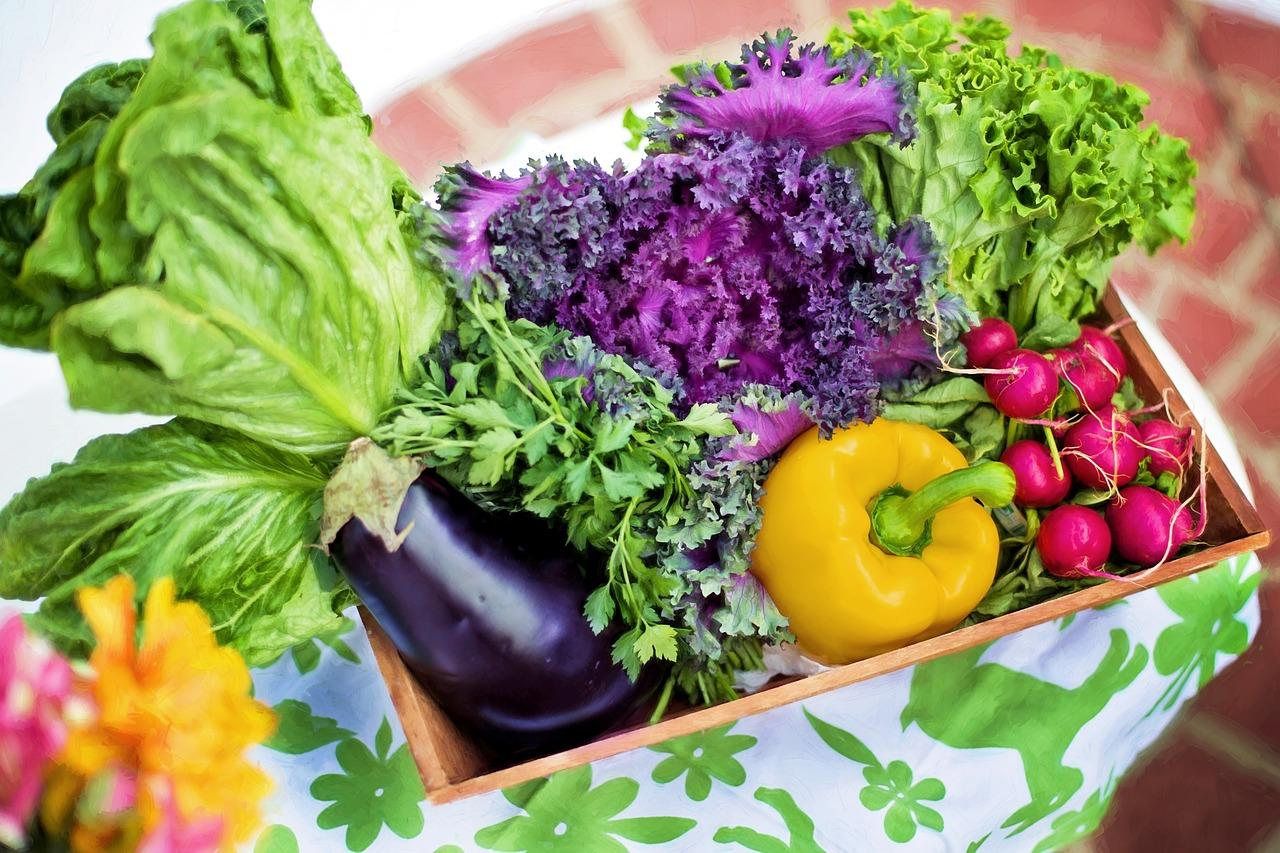 Держпідтримки органічного виробництва повинна запрацювати у 2021 році – Висоцький