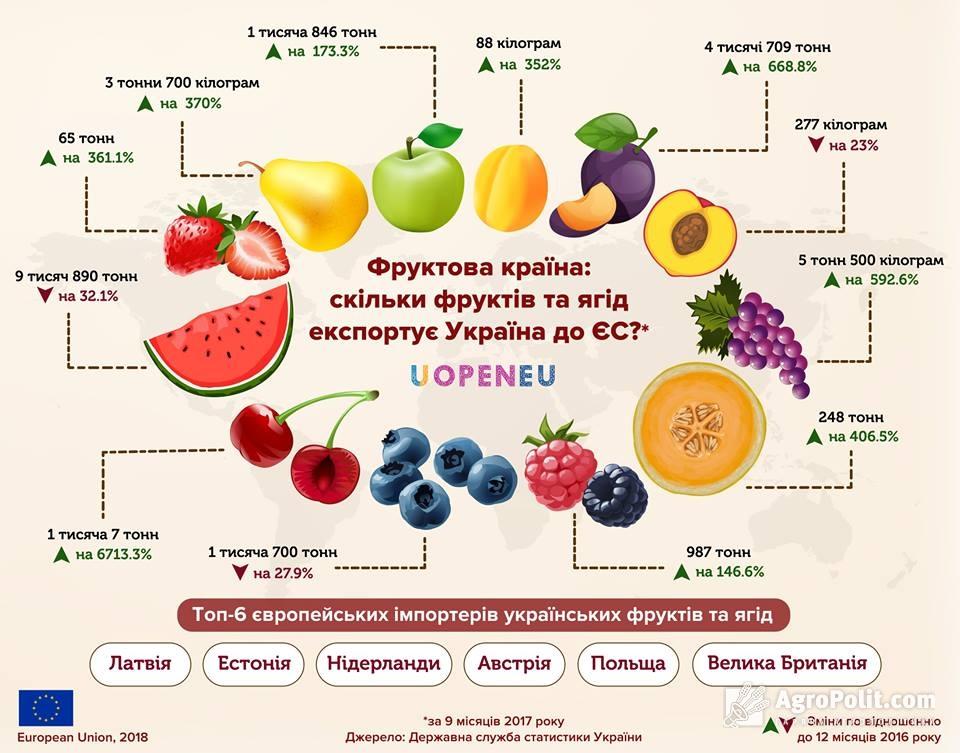 Украинские фрукты и ягоды покупают в Европе 6 стран - фото 2