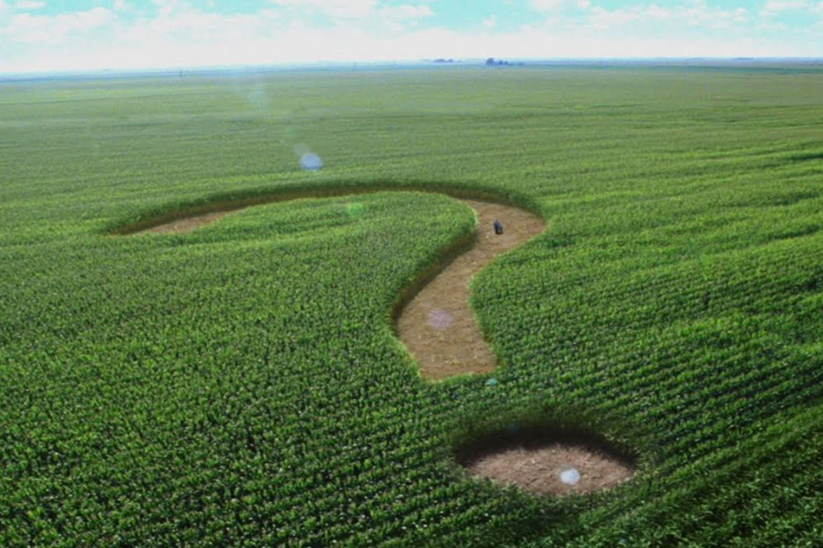 «Привид» аграрної «Батьківщини», або До чого готується «головний популіст» країни